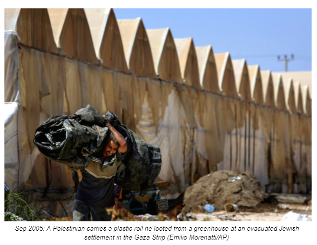 Sep 2005: A Palestinian carries a plastic roll he looted from a greenhouse at an evacuated Jewish settlement in the Gaza Strip (Emilio Morenatti/AP)